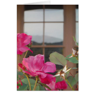 Roses & Mt. reflection in Clubhouse windows Greeting Card