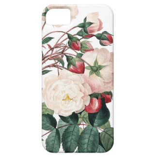 Roses of Redoute Les Roses vintage image Case For The iPhone 5