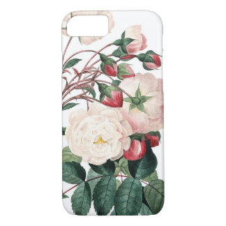 Roses of Redoute Les Roses vintage image iPhone 8/7 Case