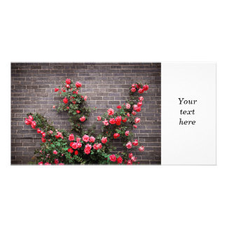 Roses on brick wall personalized photo card