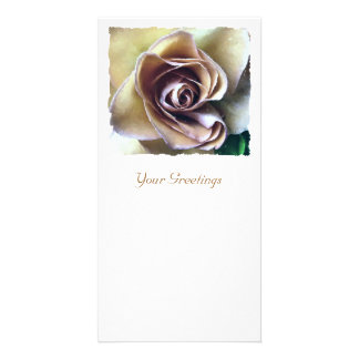 ROSES PHOTO CARD TEMPLATE