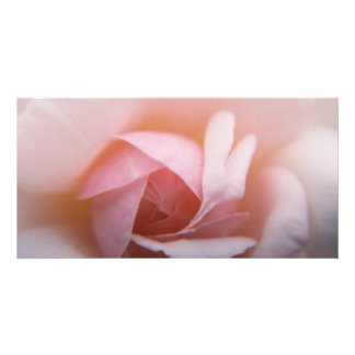 Roses Roses Roses Photo Card