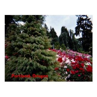 Rosey Landscape Portland, Oregon Postcard