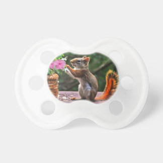 Rosh Hashanah Cards Gifts Pacifier