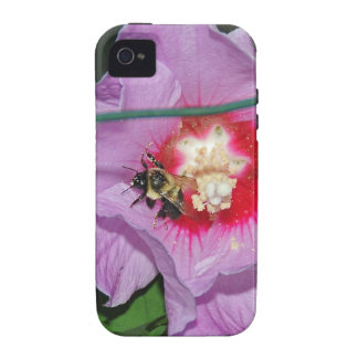 Rosh Hashanah Cards Gifts iPhone 4/4S Covers