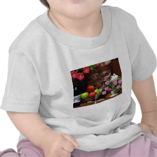 Rosh Hashanah Cards Gifts Shirts