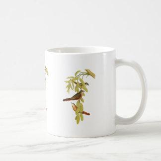 Rosy Minivet Mugs