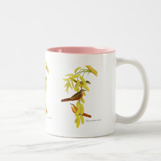 Rosy Minivet Two-Tone Mug