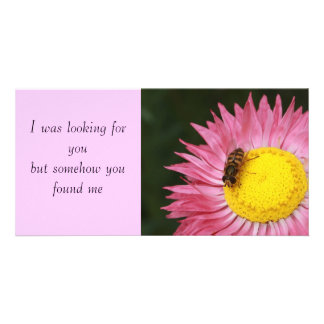 Rosy Sunray and Hoverfly Photo Card