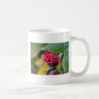 rote Rose mit Rauhreif im Garten Nahaufnahme Kaffee Tassen