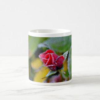 rote Rose mit Rauhreif im Garten Nahaufnahme Kaffeetassen