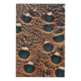 Rothschild Peacock-Pheasant Feathers Wood Wall Art