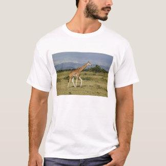 Rothschild's Giraffe, Giraffa camelopardalis T-Shirt