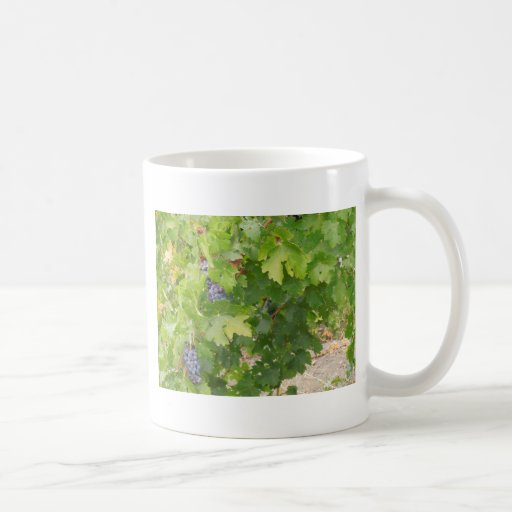 Rotta Dry Farmed Grapes on the Vine Mug