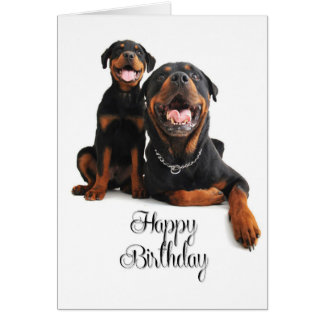 Rottie Birthday Card