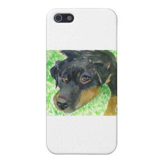 Rottie Looking at You ready to play iPhone 5 Cover