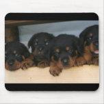 rottie pups mouse mat