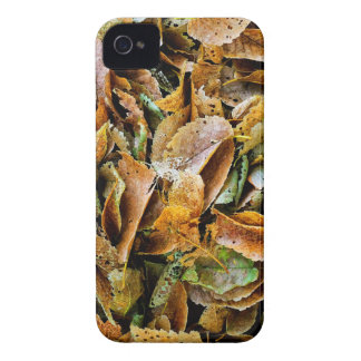 Rotting leaves iPhone 4 cases