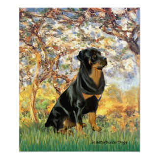 Rottweiler (#5) - Spring Posters