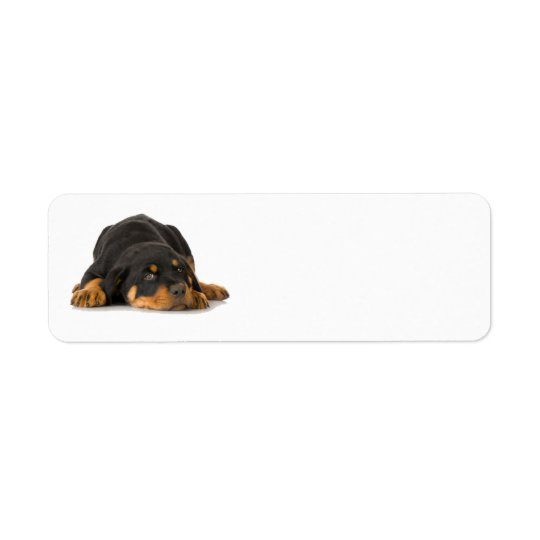 Rottweiler Address Label