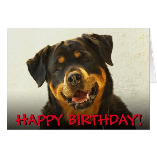 Rottweiler birthday card