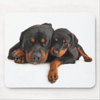 Rottweiler Brown & Black Puppy Dog Love Mouse Mat