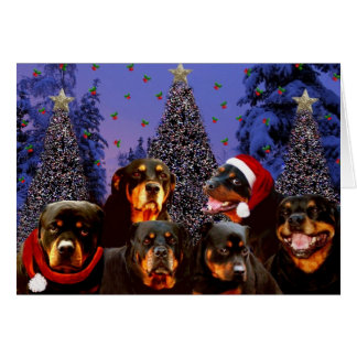 Rottweiler Christmas Card