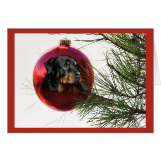 Rottweiler Christmas Card Ball Hanging