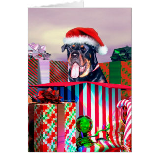 Rottweiler Christmas Surprise Card