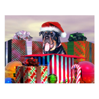 Rottweiler Christmas Surprise Postcard