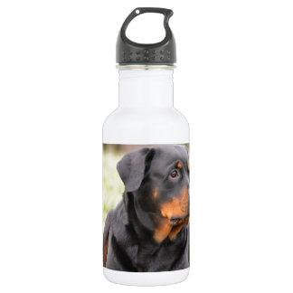Rottweiler Dog 532 Ml Water Bottle