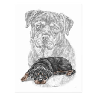 Rottweiler Dog Art Postcard