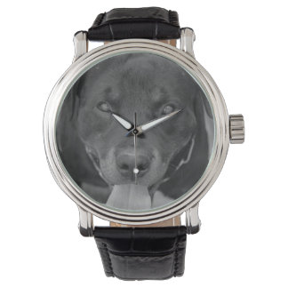 Rottweiler Dog Black & White Watch