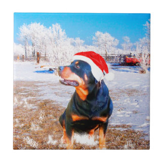 Rottweiler Dog Christmas Painting Small Square Tile