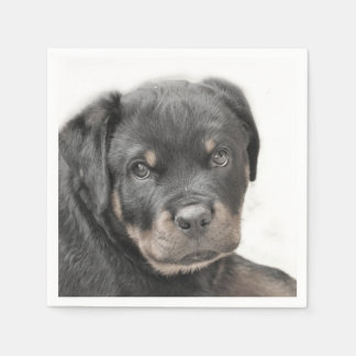 Rottweiler dog disposable napkin