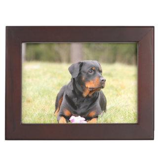 Rottweiler Dog Keepsake Box