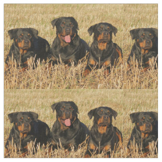 rottweiler-group.png fabric