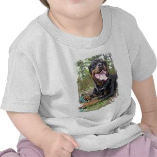 Rottweiler Photo Baby T-Shirt
