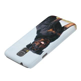 Rottweiler Portrait Samsung Galaxy Case