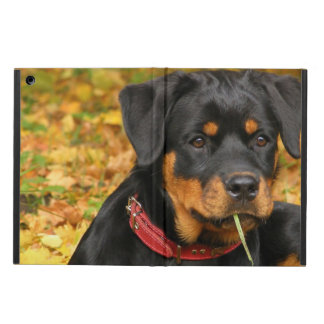 Rottweiler Pup Lying On The Ground In Forest Case For iPad Air