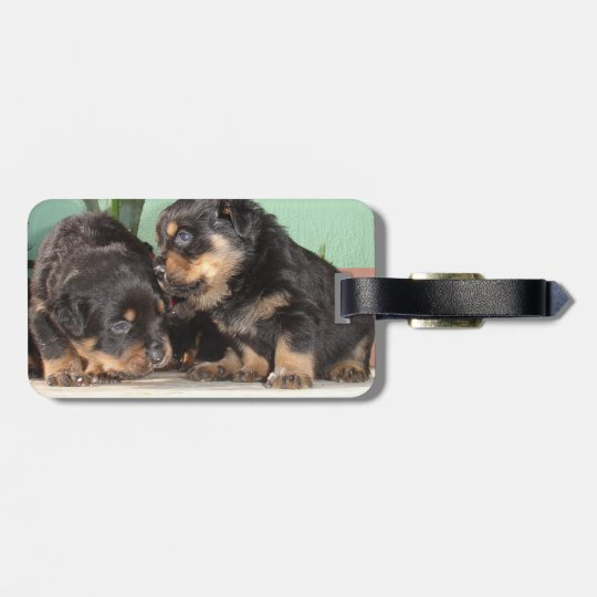 Rottweiler Puppies Best Friends Forever Luggage Tag