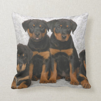 Rottweiler puppies cushion