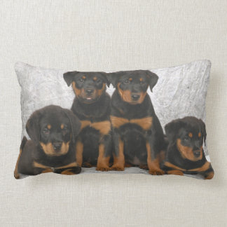 Rottweiler puppies lumbar cushion