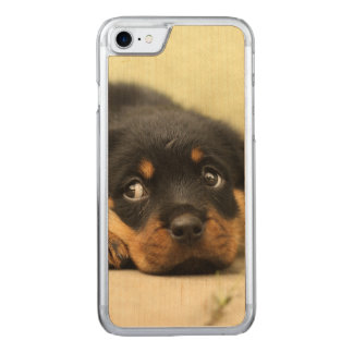 Rottweiler puppy dog curious carved iPhone 7 case