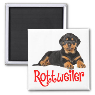 Rottweiler Puppy Dog Red Love Magnet