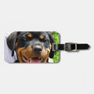 Rottweiler puppy face Dog Cute Luggage Tag