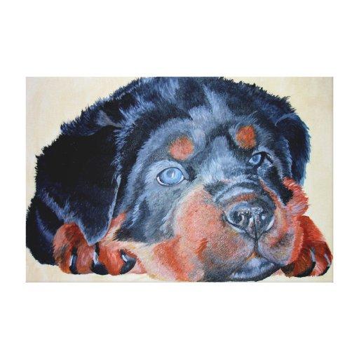 Rottweiler Puppy Portrait Gallery Wrap Canvas