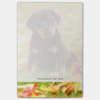 Rottweiler Puppy Sitting In Autumn Leaves Post-it® Notes