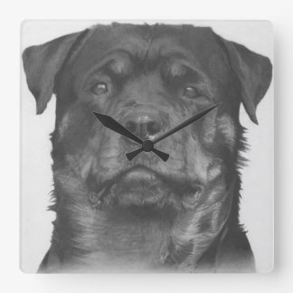 Rottweiler Square Wall Clock