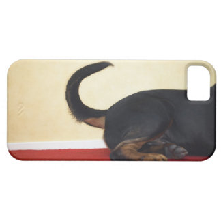 Rottweiler wagging tail, hind section iPhone 5 cover